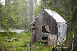 En mystisk koja i skogen hade förbryllat Krokomsborna hela sommaren. Någon hade bott där, men vem?I dag får ni berättelsen om Martin, 15 år, som en tid hade kojan som fristad.