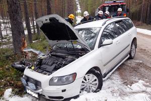 Bilen kraschade mot ett träd.