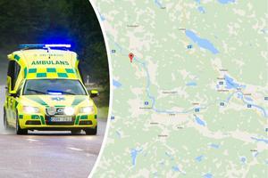 En man dog efter att ha krockat med en älg norr om Färila.