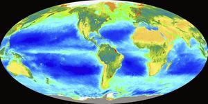 Skribenten tvivlar på att de flesta forskare är övertygade om fossila bränslens påverkan av klimatet.