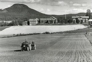 Höstsådd i Norrvåga, Järvsö, Järvsöklack syns i bakgrunden.