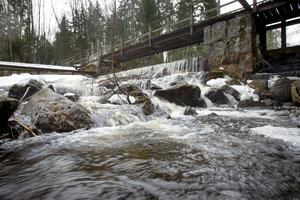 Den här dammen ska rivas för att ge fria vandringsvägar för fisk förbi Sofieholms kraftstation i Njutånger när Sofieholms naturreservat bildas.
