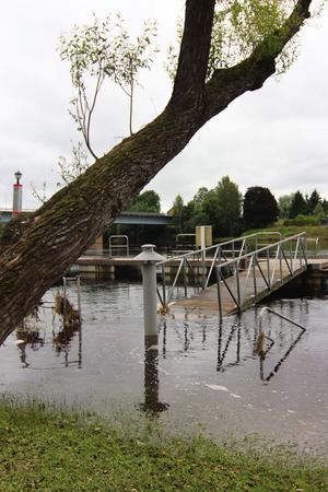 Sommarens ihärdiga regnande ställde till det i Fäggeby, vattennivån i Dalälven höjdes och ställde bland annat gästhamnen under vatten.