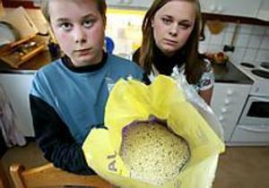 Foto: LARS WIGERTIngen aptitlig rislunch. Barnen Johan och Emma Berglund visar upp påsen med insekterna.