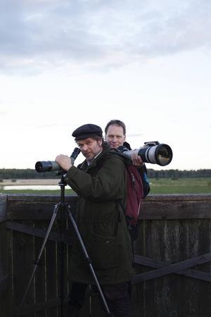 Författaren Tomas Bannerhed och fotografen Brutus Östling gör upptäcktsfärder i svenska fågelmarker i den gemensamma boken