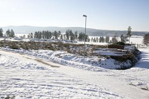 50 träd, mestadels tallar, har huggits ner mellan campingen och sommarland.