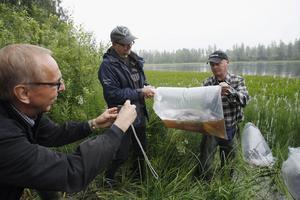 Sven Görgård, som är den som kom med idén att plantera gräskarp i Edevågen, förevigar Owe och Sven-Åke Wiklund när de ska till att släppa ut fiskarna.