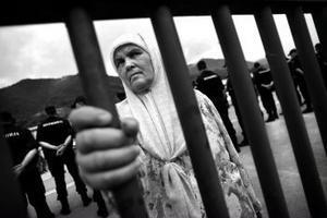 Den 11 juli var det tio år sedan massakern i Srebrenica utfördes då cirka 8 000 bosnien-muslimer mördades. En stor ceremoni med deltagande från hela världen genomfördes på årsdagen. Många som sörjde sina anhöriga hade också begett sig till ceremonin för att hedra sina släktingar.