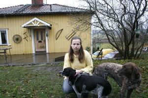 Hundar. Britt-Marie Eriksson saknar sin finska lapphund Akita. Hunden blev ihjälkörd på riksväg 68 i Hästbo för drygt två veckor sedan, men föraren smet. Sedan tidigare äger hon två vorsteh, en pointer och en blandrashund.