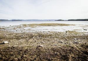 Så här såg vattennivåerna ut när det var som lägst under 2016 i Norra Dellen.