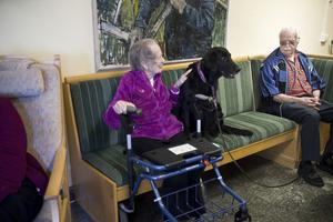 Eivor Larsson och hunden Cilla trivdes bra ihop i soffan. Agnar Salthammer, längre bort, kom också bra överens med Cilla. Han har själv haft hundar, berättade han.