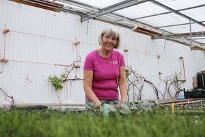 Lisbeth Wilhelmson på Gustafsängs Trädgård märker av det ökade intresset för grönsaksodling.