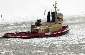 Hamnens lilla isbrytare. Alla hamnar har en egen liten isbrytare som håller den inre delen av hamnen öppen. I Gävle Hamn är det Järven som ansvarar för det.