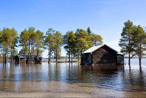 Hammerdals IF:s förråd finns i dessa hus.Foto: Håkan Luthman
