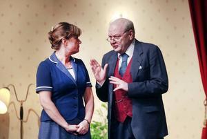 Fru och herr riksdagsman. Frun i hushållet Emma Klink och riksdagsmannen Edvard Lagberg försöker komma tillrätta med Emmas dotter Paulas behov av att bli bortgift.