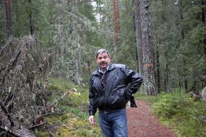 Det finns två alternativa stigar att vandra upp mot Järvsö klack och fler blir det då alla naturvärden på klacken ska lyftas fram.