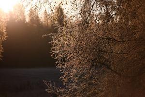 Lillsjön vid Lillsjöhögen
