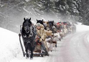 Årets resa mot Röros har startat. Hästen Qdox har klarat den först stigningen från Klövsjö. Gunnar Ahlzén håller i tömmarna.