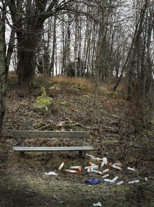 Vid en parkbänk bakom Rodengymnasiet hittades nyligen ett 20-tal tomma flaskor av den dödliga toadoften. Foto: Måna J Roos