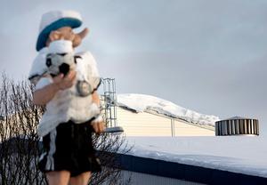 Enligt Örebroporten, som äger Behrn arenas ishall, ska det inte vara någon fara att taket rasar in på grund av snön.