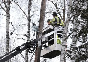 Eltel Networks fixar så strömmen kommer tillbaka.
