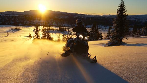 En magisk eftermiddag på fjällen i Edsåsdalen under julen 2015.  Foto: Josefine Edlund