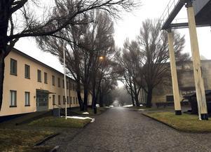 Gruvstugan till järnmalmsgruvan, Filmarkivet i Grängesberg har blivit en rörlig guldgruva över 1900-talet.
