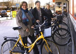Gemensamt mål. En cykelväg mellan Hällefors och Grythyttan är det gemensamma målet för Monica Bergström och Maria Dahlqvist från Företagarföreningen och Hällefors Turistbyrå samt Anna Gustafsson som tidigare lagt en medborgarmotion i ärendet till kommunen.