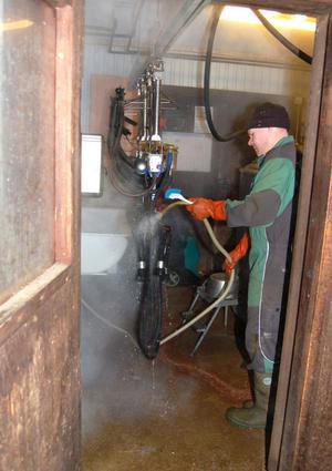 Nu sköter gammeldags mjölkmaskiner mjölkningen. Per-Arne tvättar dem efter morgonmjölkningen. När den nya lagården är i drift är det en robot som mjölkar korna.