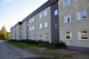 Flera vittnen säger sig ha sett en vit Volvo amazon utanför Johan Asplunds sovrumsfönster på Bågevägen i Bosvedjan kort tid innan han försvann. Bilens kom också att bli misstänkt för att ha fört bort Johan.