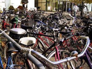 Ut och cykla! Vi rödgröna tänker arbeta för att Västerås återigen ska bli cykelstaden nummer ett, skriver debattörerna.
