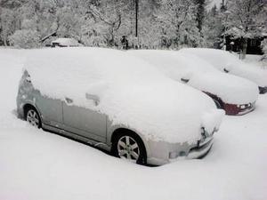 I Trillevallen föll upp till tre decimeter snö under söndagen och där har det även snöat av och till under veckan. Enligt uppgifter till LT hade plogbilarna fullt upp på flera ställen i länet under söndagens snöfall. Foto: Catarina Montell