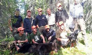 Efter bara några minuter fann hundarna på en björn som de började driva långsamt genom skogen. Det tog en timme innan Mikael Falk lyckades genskjuta björnen på en skogsbilväg för att få skottläge och fälla björnen.