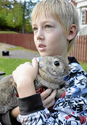 Omtyckt tradition. Karl Ivarsson tyckte att det var roligt att visa upp sin kanin Zorro för kompisarna i skolan.