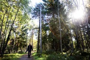 """OMÖJLIG UPPGIFT. Örjan Carlsson och Gävle södra scoutkår vill att den nedsläckta motionsslingan i Andersberg blir belyst på nytt. Men för att den ska bli det måste någon på kommunen ansvara för den – vilket ingen i nuläget vill. """"Jag hade förstått det bättre om de motiverat det som en besparing"""", säger Örjan."""