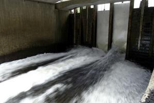 Det står i beslutet från 1932 att den mittersta dammluckan i Stocka ska hållas öppen mellan islossningen och den 10 juni för att fiskar ska kunna simma förbi kraftverket.