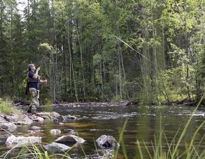 I Hans Lidmans texter beskrevs Svartån med kärleksfulla meningar och många drömde sig bort till ån som i själva verket heter Mållångsboån. Magnus Åsentorp är en hängiven flugfiskare.