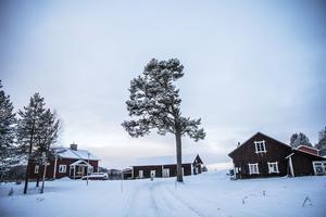 Öst i mon, och lite hitom till vänster (syns inte i bild) bor Torbjörn Eriksson.