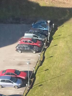 Sambons bil är så ful att alla fåglar väljer att bajsa på den? Det ser så ut. Men nej, sanningen är att den stod parkerad 3 timmar på Munkgatan kvällen innan bilden togs.