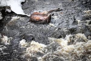 När ån restaureras lyfts stenar tillbaka från kanterna och in till ån.