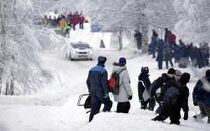 Årstiden har nästan fyra veckor på sig att fixa sådan vinterstämning, med snögplogkanter som på bilden, till Rally Sweden som kommer till Fredriksberg lördagen den 9 februari. FOTO CHRISTER HÖGLUND/SCANPIX