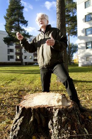 Per Olof Erickson, 70, pensionär och ordförande i Naturskyddsföreningen Gävleborg, Gävle:– Positivt. Allt gick för fort, det var onödigt att reta upp handlarna med att stänga av. Men på sikt är det nödvändigt att minska bilismen i centrum. I framtiden kommer vi inte att kunna köra lika mycket bil, därför är det lika bra att börja ställa om redan nu.