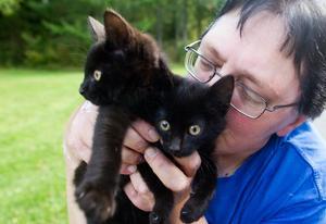 Lotta Blomberg kan inte förstå hur någon människa kan vara så grym att de lämnar kattungar att dö i ett dike.