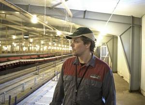 veckor kvar. Om några veckor får den nyblivne äggbonden Patrik Axlund ytterligare 12000 värphöns till gården i Mörtebo.620 ton. Enligt Patriks beräkningar ska hans höns ge cirka 620 ton ägg per år.
