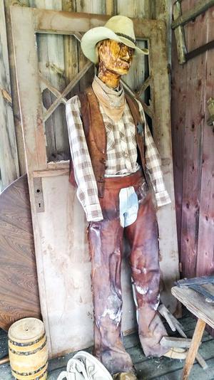 Howdy, howdy! Gammal cowboy i staden.