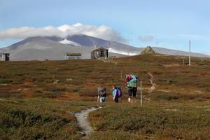 Skicket på lederna i Jämtland varierar. Bilden är tagen längs vandringsleden mot Helags.