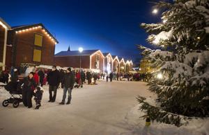 En gnistrande vinterdag bidrog till att det blev julstämning på Möljen.