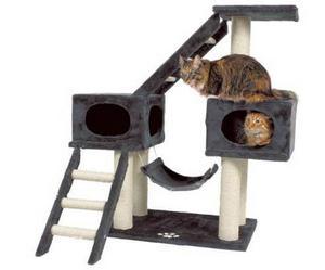 Nu är det inte alla kissar som nöjer sig med att vässa klorna på en pall, en del har större ambitioner. Stort klös- och lekträd inklusive hängmatta och stegar finns hos djuria.se. Den här modellen heter Malaga och kostar 1 119 kronor.