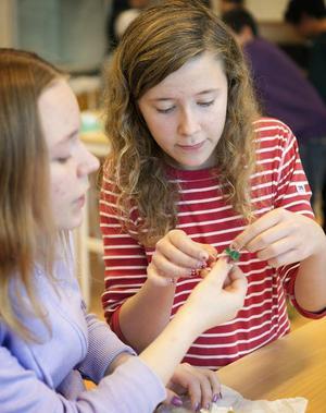 Alva Fureman och Agnes Benjaminsson provar färgämne från ormbär.