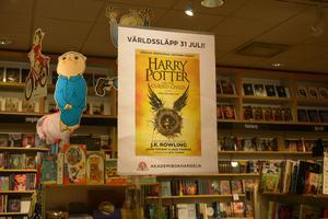 Boken hade världssläpp den 31 juli.
